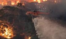 """Românii din Australia explică de ce incendiile de anul acesta sunt mai grave decât cele anterioare. """"Sunt de 24 de ani aici și nu-mi aduc aminte să fi fost o vară fără focuri. Natura se reface foarte repede, după câteva luni, nici nu mai vezi pe unde a fost focul"""""""