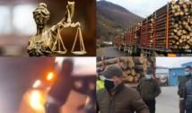 DOCUMENT O grupare civică, victorie notabilă contra mafiei lemnului. Procurorii au deschis dosar penal pentru tentativă de omor și constituirea unui grup infracțional organizat