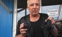 Latifundiarul Mugur Isărescu a dat lovitura în pandemie. Afacerea cu vinuri de la Drăgășani i-a mers cel mai bine de la lansare