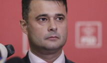 Megalomania pesedistului Daniel Florea: 820 milioane lei pentru amenajarea spațiilor verzi din Sectorul 5