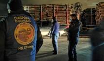 """Diaspora Europeană, acțiuni în forță contra defrișărilor ilegale: """"Din păcate Sumal 2.0 încă nu funcționează nici măcar la autorități"""""""
