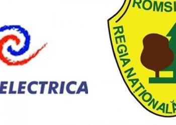 Cum abuzează o firmă de pază angajații, chiar și prin agresiune fizică. Cazurile Hidroelectrica Piatra Neamț și Romsilva