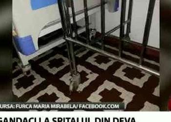 Spitalul de Copii din Deva: mizerie, gândaci și angajați abuzați de conducerea cu pile la PSD