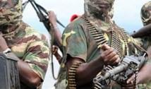 Rețeaua TERORII. Cum se susține economic Boko Haram, cea mai mare grupare teroristă a Africii: jafuri, răpiri și numeroase… TAXE